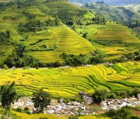 Muong Hoa Trek - 3 Day